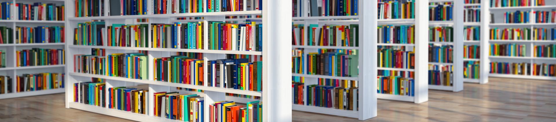 מערך הספריות והמידע
